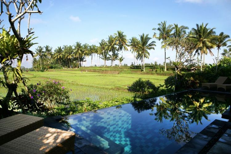 Villa Bamboo crystal clear swimming pool with two chaise lounges on pool deck and view over rice paddies
